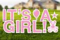 It's a Girl Yard Letters