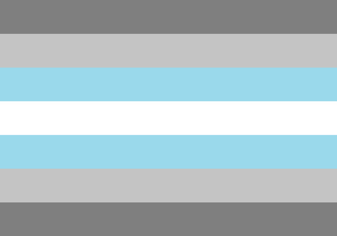 Demiboy Flag