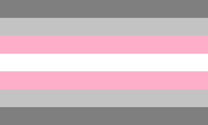 Demigirl Flag